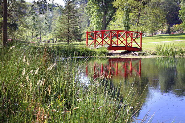 Himalayan Garden Bridge